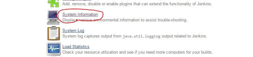 Jenkins system information.JPG