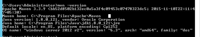 maven-version-output