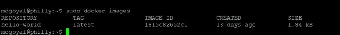 Checking running docker images