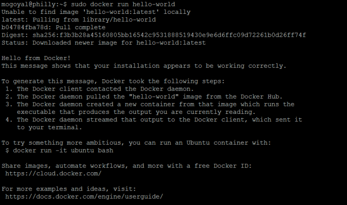 Run a hello-world image from docker