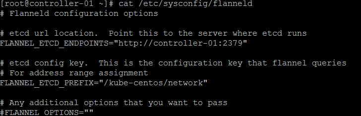 Edit flanneld config file