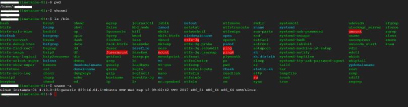 run few commands in browser based ssh window