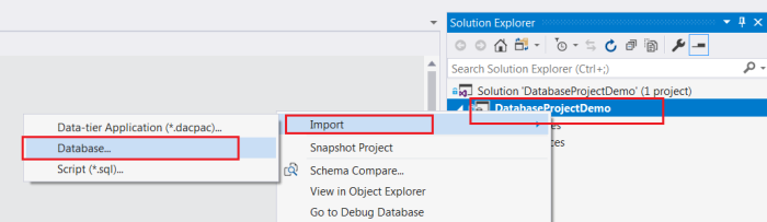 Import existing database into sql project