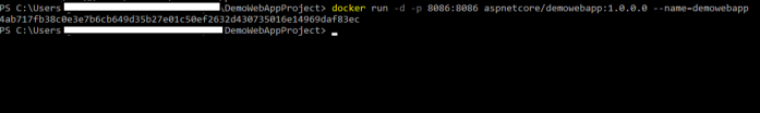 Initiate a container from the docker image created